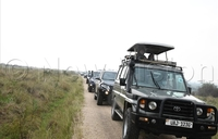 Convoy scares away lions in National Park