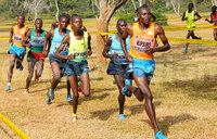 Kipsiro back for National Cross Country event