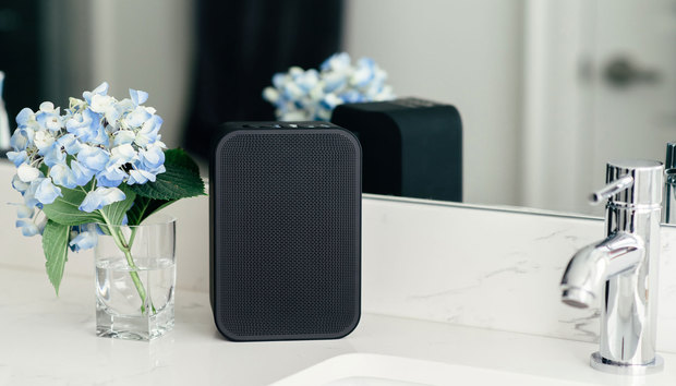 Bluesound Pulse Flex 2i review: This well-built wireless speaker delivers an underwhelming audio performance
