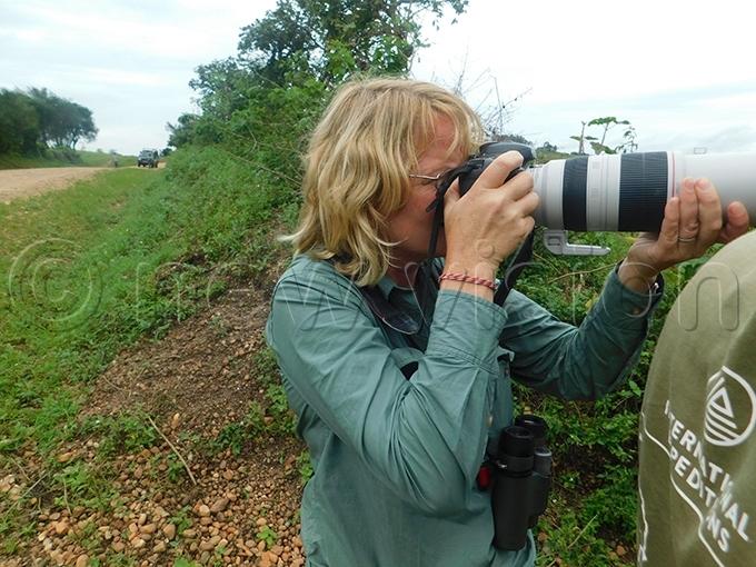 elga ieskam taking photos of every bird crossing her path hoto by itus akembo