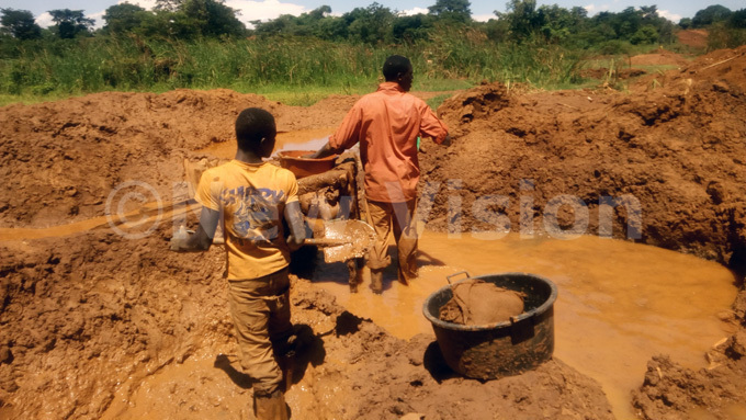 en extracting gold from ore in a wetland in udde village in ugiri district