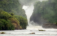 Discover Murchison Falls, Uganda's most beautiful National Park
