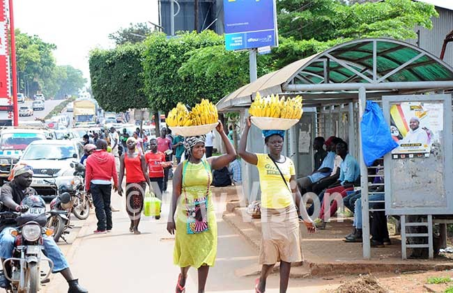irl vending yellow bananas around the streets of ampala in order to earn a living ile photo