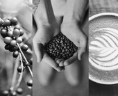 How blockchain is helping the coffee industry count beans