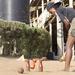 Woodball: Mukoova set for University Games
