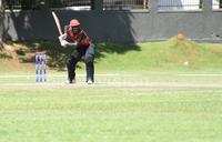 Cricket Cranes in last gasp historic win