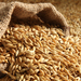 Ex-NEMA official in court over expired barley
