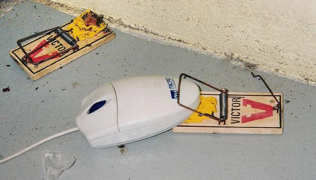 computer-mouse-trap