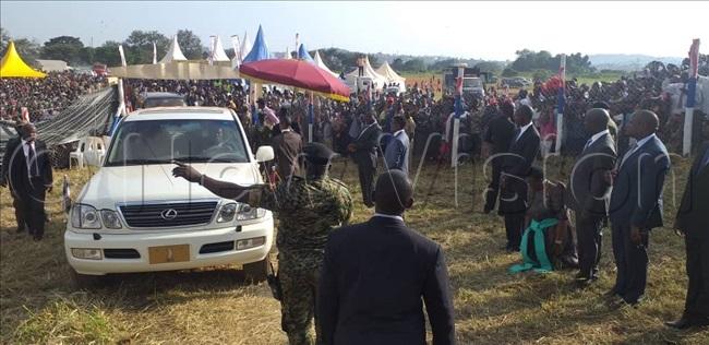 abaka arrives