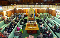 Road carnage: Parliament wants victims compensated