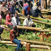 Namanve Forest in deep trouble