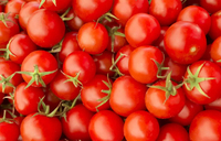 Tomatoes: A cherry for all seasons