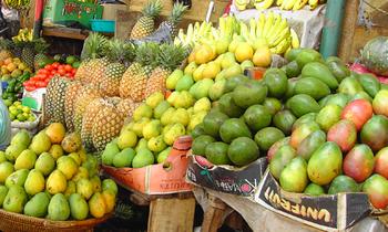 Fruits 703 422 350x210