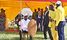 Arua leaders, youth apologise over by-election chaos
