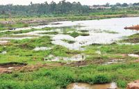 Only strict laws could salvage Lake Victoria