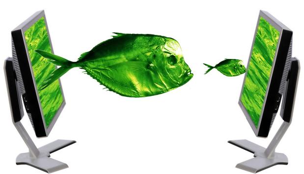 m-a-fish