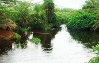 The mystical River Mayanja