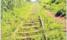 Repair of railway line excites Teso
