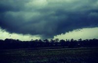 Tornado kills 14 in US state of Alabama: officials