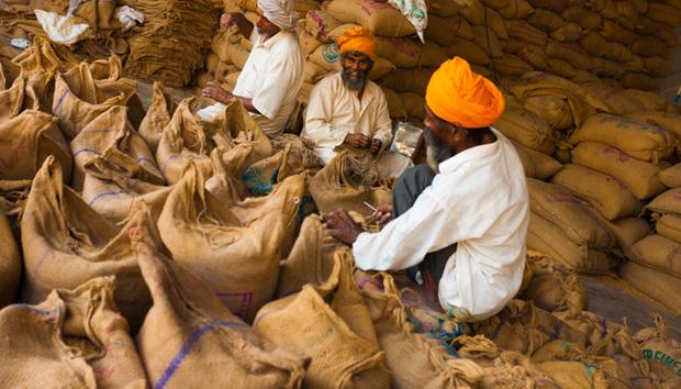indian-grain