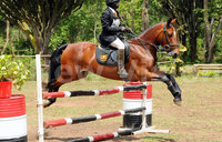 In pictures: Pre-launch of Uganda Equestrian Association