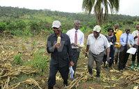 Kisamba-Mugerwa steps into commercial farming