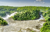 Stop flip-flopping over Murchison Falls