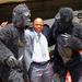 Gorilla in the Mist Rally postponed
