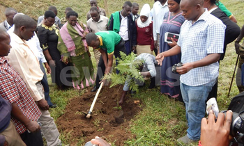 Fort portal mayor kintu muhanga and other officails launching the tree planting porject on the banks of mpanga river in fort portal over the weekend 350x210