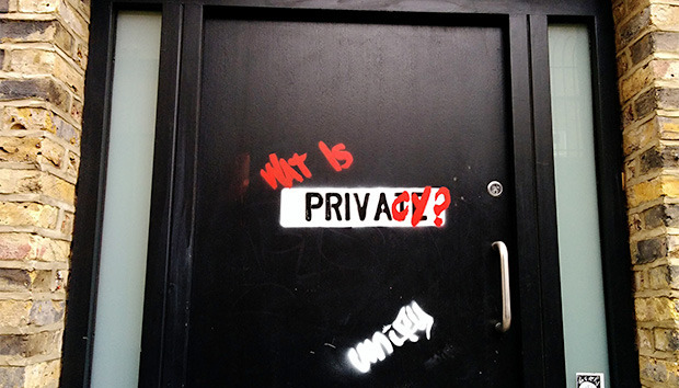 privacydoor100638997orig