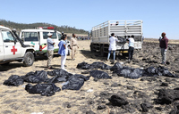 No survivors from crashed Ethiopian Airlines plane