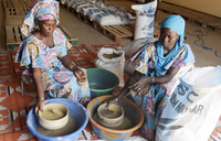 In rural Senegal, seeds of hope for working women