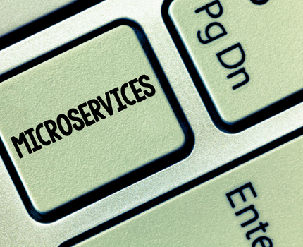 Getting the macro picture about microservices
