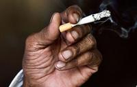 Global tobacco death toll still climbing