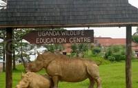 Entebbe Zoo wins Waza Biodiversity award