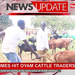 Hard times hit Oyam cattle traders