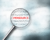 The business rationale for an open source software internal audit