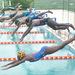 Dolphins excel at Kenya championships