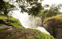 A remarkable wildlife experience in Murchison Falls National Park