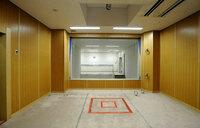 Japan 'executes two death row inmates'