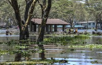 'Like the speed of the wind': Kenya's lakes rise to destructive highs