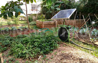 Using solar energy to irrigate your farm