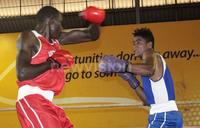 KCCA enters boxing arena