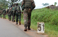Fresh fighting breaks out in northeastern DR Congo