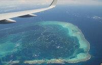 'Global warming making oceans sicker'