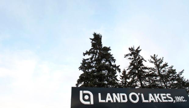 landolakesinccorporateheadquarters100661243orig