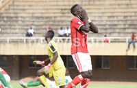 Vipers' vow to keep on fighting