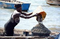 Residents at Kisansa West Landing Site cash in on seashells