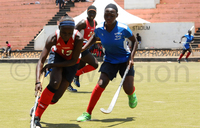 Wananchi's aura of invincibility earns them another title
