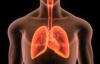 Immunotherapy boosts survival outlook for lung cancer patients: study